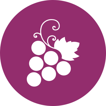 Aiguille - Domaine Vinicole